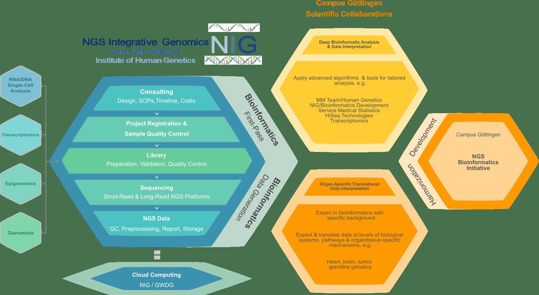 Struktur der NIG